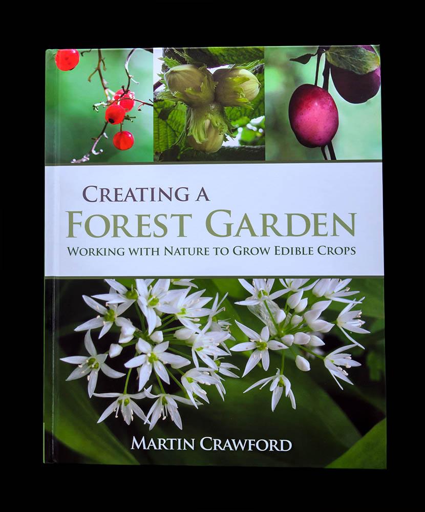 la création d'un jardin de forêt