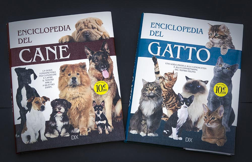 libri a copertina rigida stampati da PAG per Rusconi